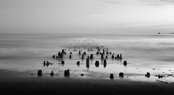 William Randolph Hearst State Beach, California