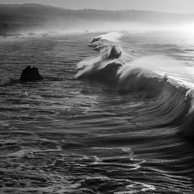 Wm. R. Hearst State Beach, California