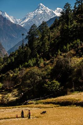 Below the highest peaks in the world