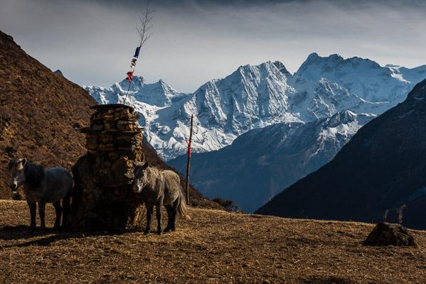 Samdo, Nepal