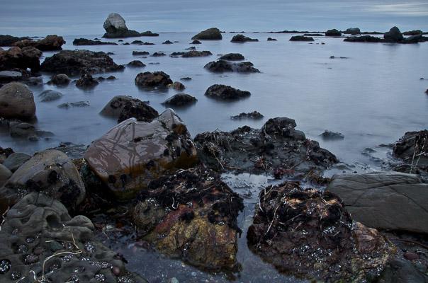 Estero Bay, California