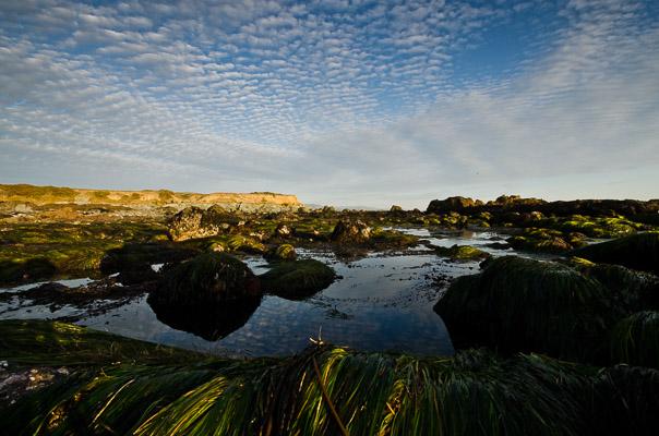San Luis Obispo County Coast, California